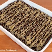 Oatmeal Whole Wheat Peanut Butter Bars with Chocolate Chips