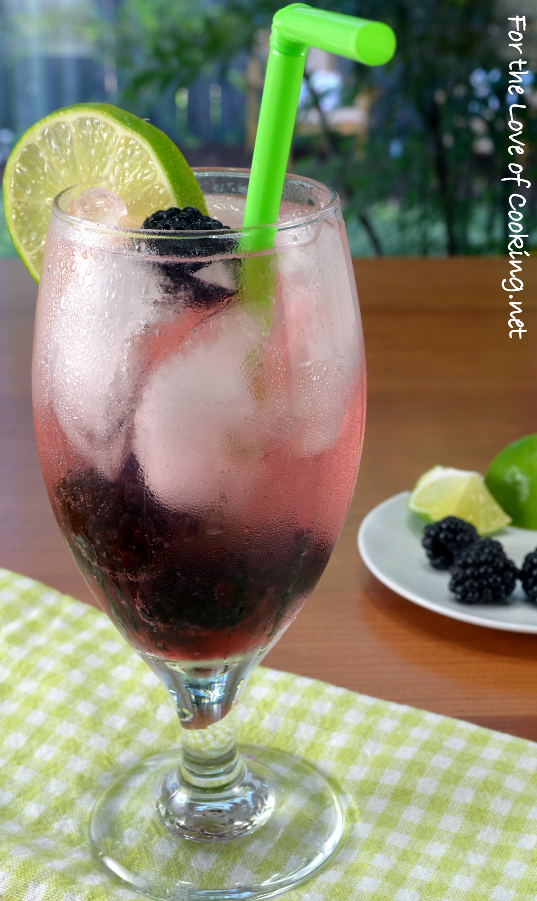 Blackberry Lime Vodka Fizz | For the Love of Cooking